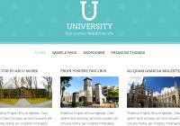 tema-university