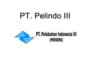 pt-pelindo