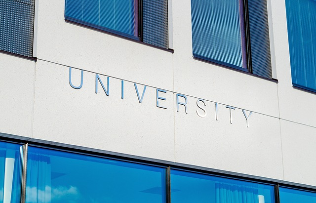 peringkat Universitas indonesia